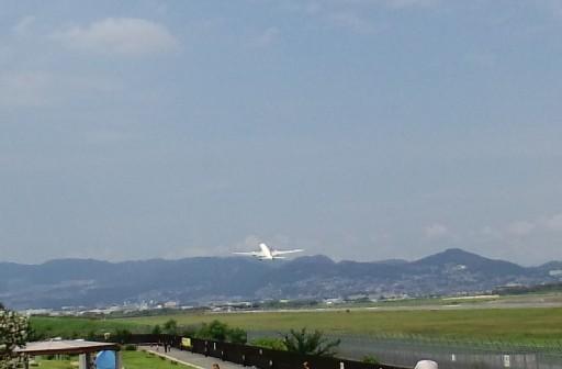 KIREI_CA3C2977.JPG