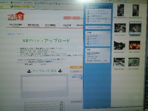 KIREI_CA3C4449.JPG