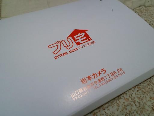 KIREI_CA3C4488.JPG
