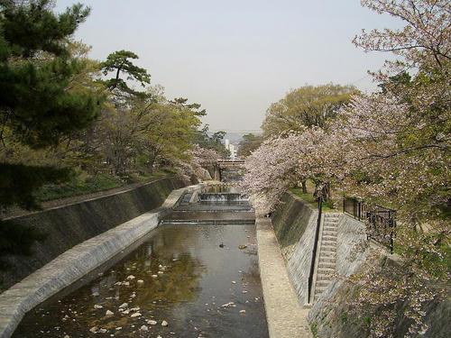 夙川公園1