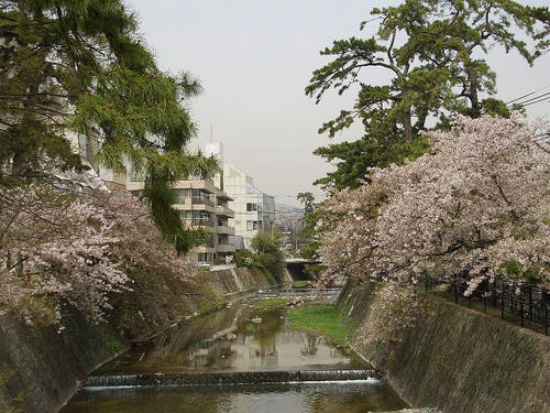 夙川公園3