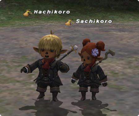 ●achikoro
