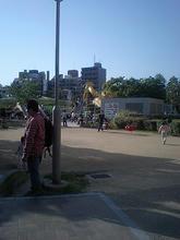 ougimachi1.jpg