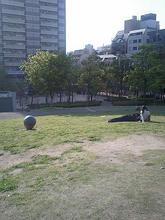 ougimachi3.jpg