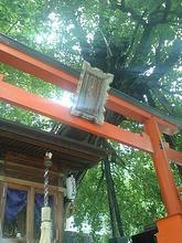 Ryuuououkami04.jpg