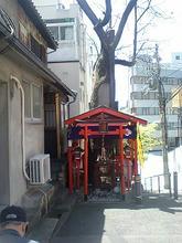 enoki4.jpg
