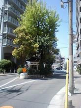 tanimachi7-2.jpg
