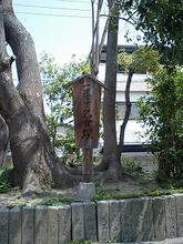 nozatosumiyoshi3.jpg