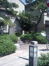 Kijinawate03.jpg