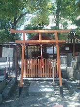 Takahama-t03.jpg
