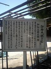 Takahama-t04.jpg