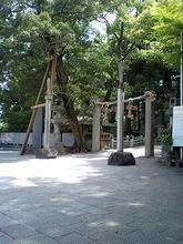 Hiraoka15.jpg