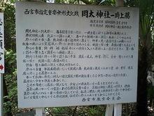 Okata-t06.jpg