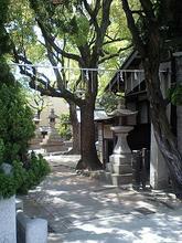Okata-t08.jpg