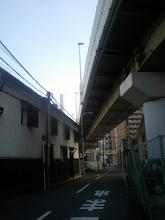 Sugawaratyo1.jpg