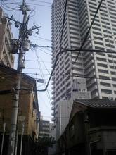 Sugawaratyo3.jpg