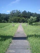 sasafuku02.jpg