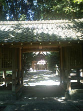 sasafuku03.jpg