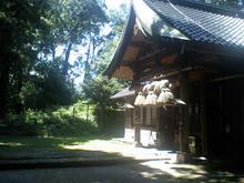 sasafuku12.jpg