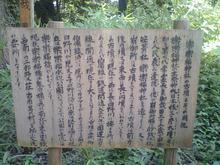 sasafuku04.jpg