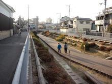 hachimanhinara04.jpg