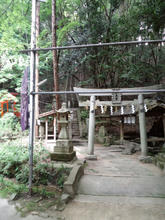 hoshidamyouken10.jpg