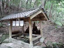hoshidamyouken11.jpg