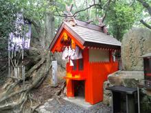 hoshidamyouken19.jpg