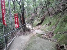 hoshidamyouken21.jpg