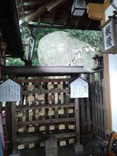 hoshidamyouken24.jpg