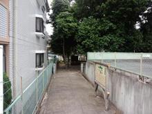 hoshinomori03.jpg