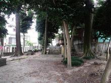 hoshinomori05.jpg
