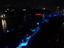 tanabata05.jpg