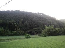 yukoyajinjya03.jpg