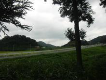yaguchijinjya05.jpg