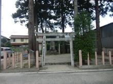 hachihonsugi02.jpg