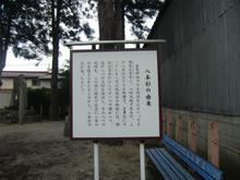hachihonsugi03.jpg