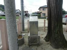 hachihonsugi04.jpg
