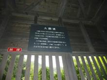 sugayatatara29.jpg