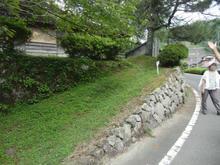 sugayatatara32.jpg