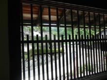 sugayatatara37.jpg