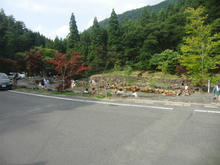 torikamitaki14.jpg