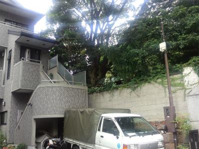 kamahachiman03.jpg