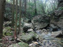ushiyadani09.jpg
