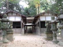 Tatumaji05.jpg