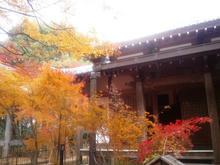 Ryuubiji13.jpg