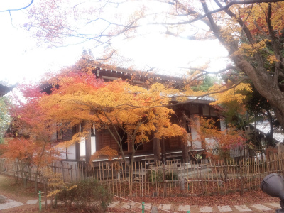 Ryuubiji14.jpg