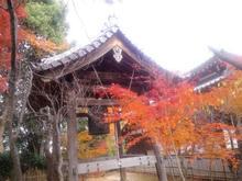 Ryuubiji15.jpg