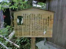 Iwawakiji10.jpg