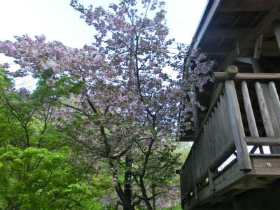 Ryuuoutaki31.jpg